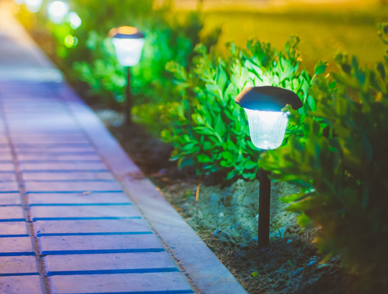 Outdoor Landscape Lighting Professional : Professional avi on results outdoor landscape lighting